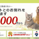 犬猫ペット火葬の口コミや評判を徹底調査!